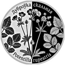 BALTARUSIJA 1 RUBLIS 2017 SIDABRAŽOLĖ